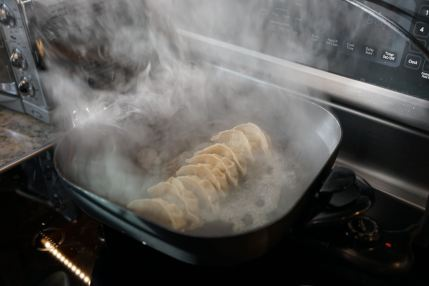 Gyoza in action